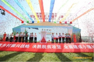 礼赞丰收,2020年武清区中国农民丰收节盛大开启
