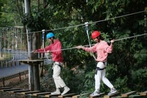 七彩澳游世界新项目|丛林飞跃,森林探险运动,16道冒险关卡等你来挑战!