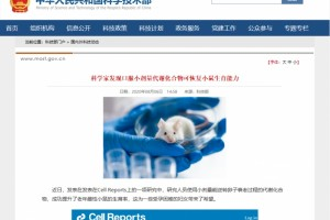 中国科技部:提升NADH有望改善高龄女性生育难题
